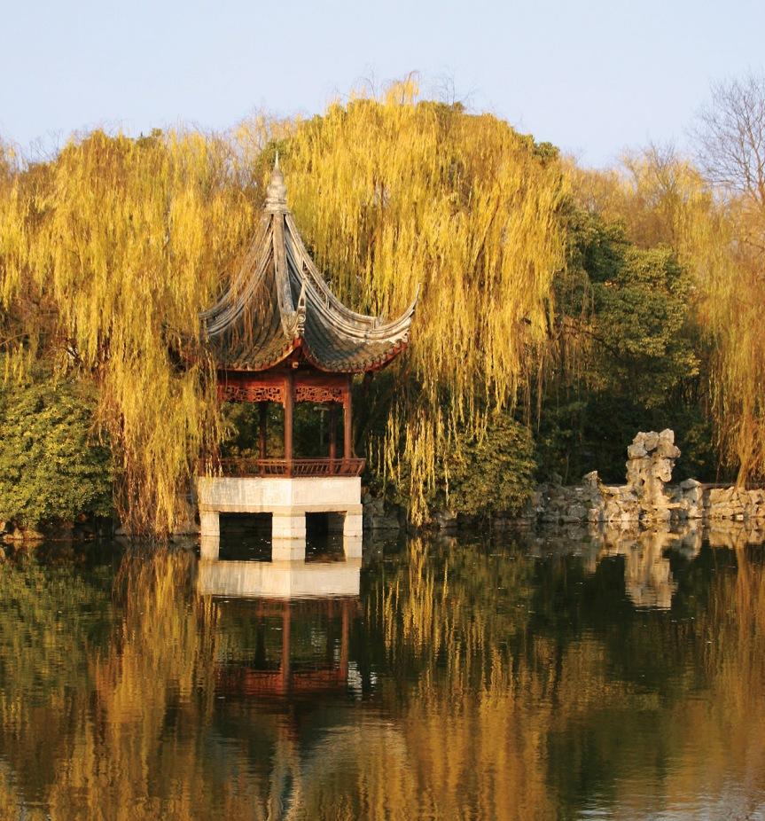 赋得江边柳 A Poem For The Willows By The River – 鱼玄机 YuXuanji